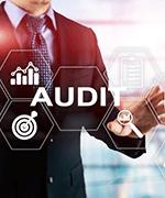 Audit and risk management