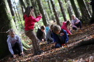 Children playing and learning in wooded area